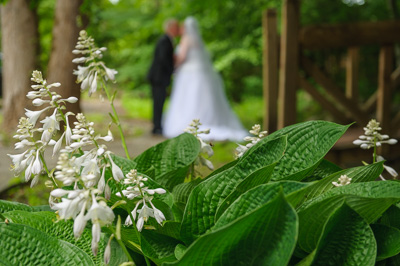 destination Wedding Packages in Gatlinburg